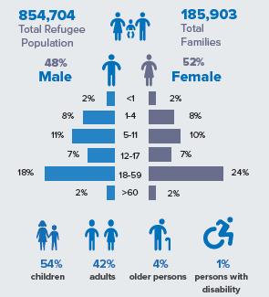 Profilo demografico dei rifugiati rohingya (Unhcr, Dicembre 2019).