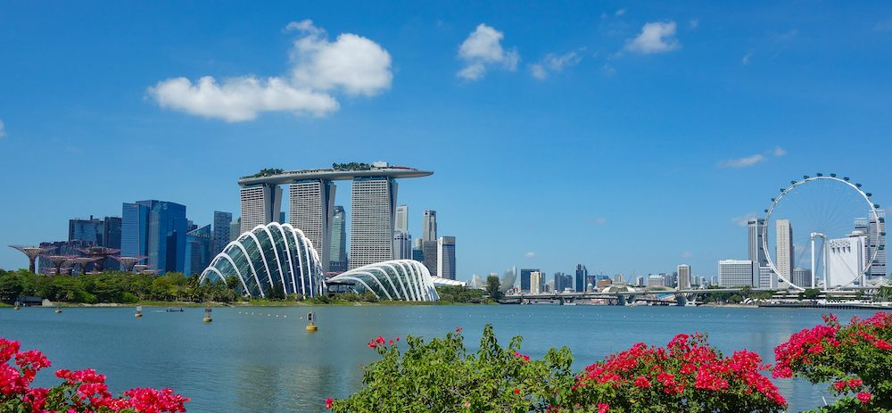 Veduta di Singapore, gennaio 2020 (Photo by Damian Gollnisch/picture alliance via Getty Images)