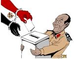 egitto, elezioni, vignette