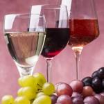 set di vini e uva