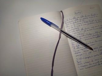 Una pagina del diario di Sandro