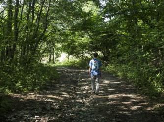 Fabrizio ama fare le passeggiate nei boschi