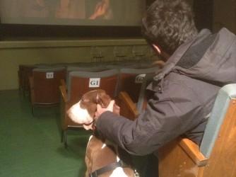 Nel piccolo cinema di Stefano e Cosetta sono ammessi anche gli animali