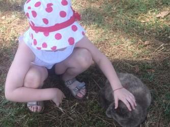 Una foto molto amata da Maria, Sophia che accarezza un gatto