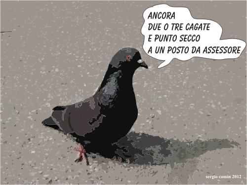 cesso_per_cani_a_merano