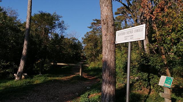 Strada Vicentina - Napoleonica