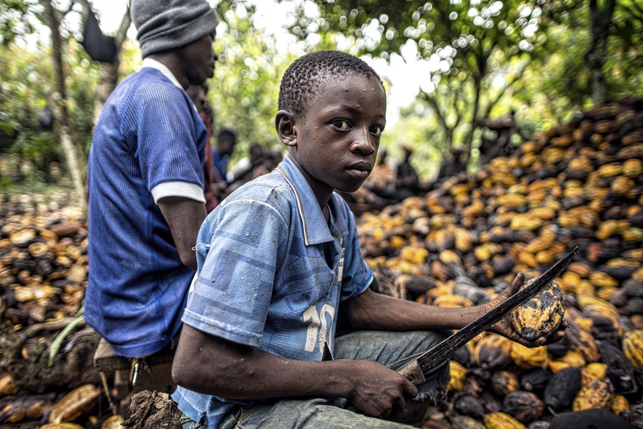 cacao-lavoro-minorile