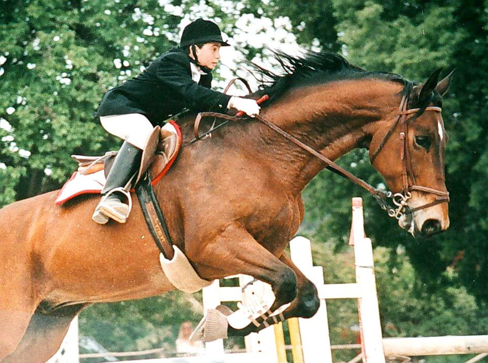 di-matteo-cavallo