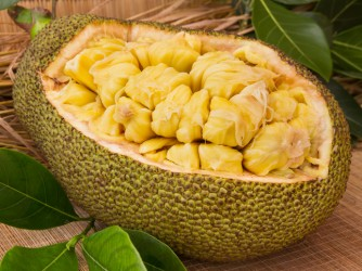Fresh ripe jackfruit. Fresh sweet jackfruit segment ready for eat.