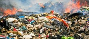 illegalità-ambientale