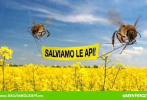 salviamo_le_api2-480x330
