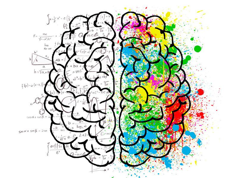 logic-brain