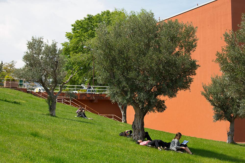 L'Università della Calabria, sede di Arcavacata