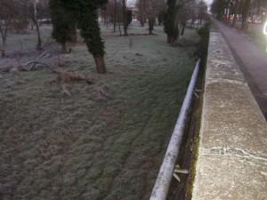Greto dopo - 29.01.2014 V.le Rustici fronte Piscina