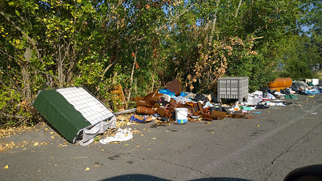 rifiuti in Via Liani - 1