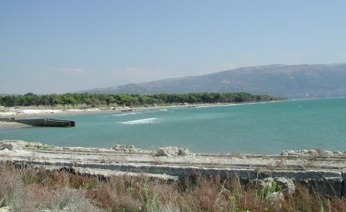 albaniadett.jpg