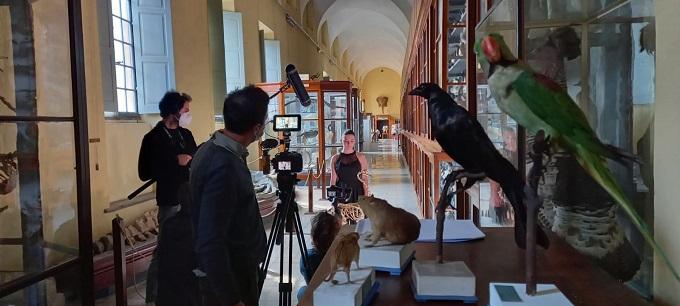 museo_scienze_naturali_ulivi
