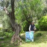 L'ulivo di Monet