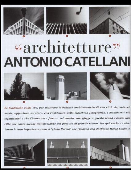 catellani-2008-oo.jpg