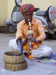 india-snake-charmer
