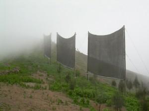 reti per trasformare la nebbia in acqua