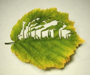 leaf0