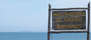 Parco-Nazionale-del-Gargano-nominato-finalmente-il-nuovo-consiglio-direttivo