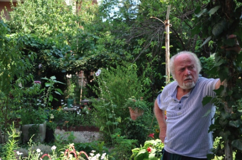 giardino-ilari