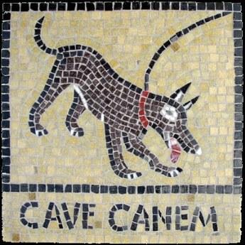 fig 5 - Cave canem