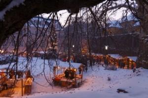 11.11.23 Adventmarkt in Stiria