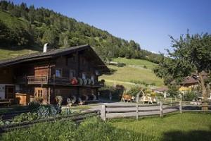 Matrei in Osttirol, Bartlerhof