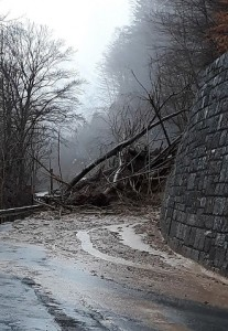 18.04.02 Frana su versante austriaco Monte Croce Carnico