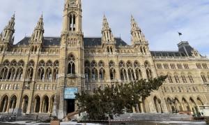 19.01.04 Vienna, albero Natale in Rathausplatz caduto