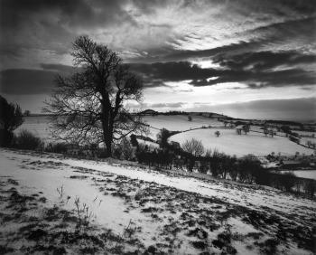 Somerset, Gran Bretagna, 1991 © Don McCullin (Contact Press Images)