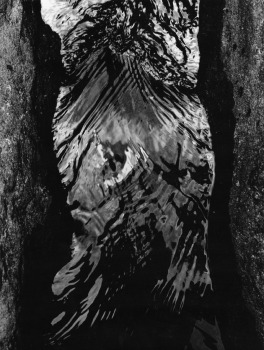 Walter Chappell, Female Water Torso, 1973 Stampa ai sali d'argento  © The Estate of Walter Chappell, g.c.