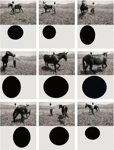 Mario-Cresci-Geometria-naturalis-2013
