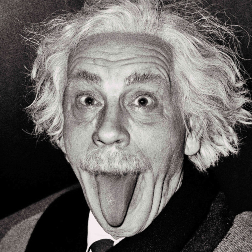 93 MALKOVICH Sasse. Albert Einstein