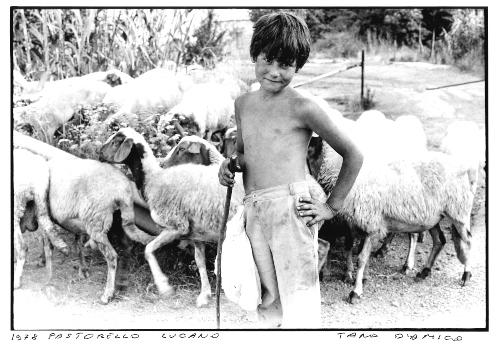 30. Pastorello lucano
