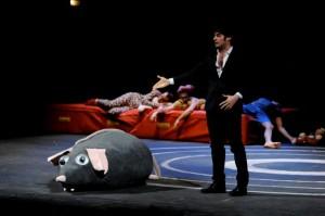 rattodeuropa foto Giuseppe Distefano