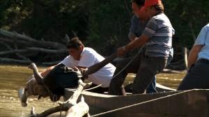 Il corpo di un giovane immigrato viene recuperato nel fiume Evros dalla polizia greca. © UNHCR/J.Björgvinsson