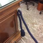 Il cordone blu anti stampa