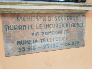 zamboni low