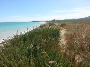 uno dei parchi marini sull'adriatico LOW