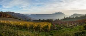 Panoramica autunno Biodistretto Colli Euganei foto di Livio Sinigaglia
