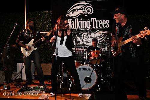 walkingtrees-18