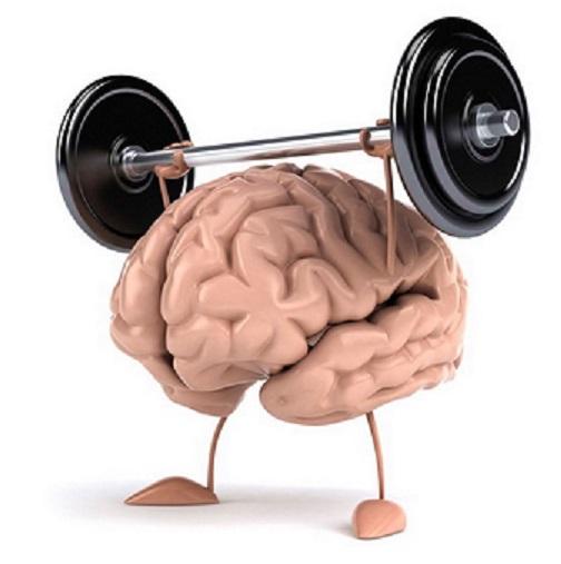 integratori-cervello-memoria-allenamento1