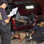"""Uno dei 33 delitti di """"criminali""""attribuiti ai vigilantes negli ultimi tre mesi"""