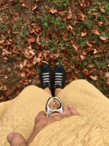 L'anello della serie L'Equilibrista