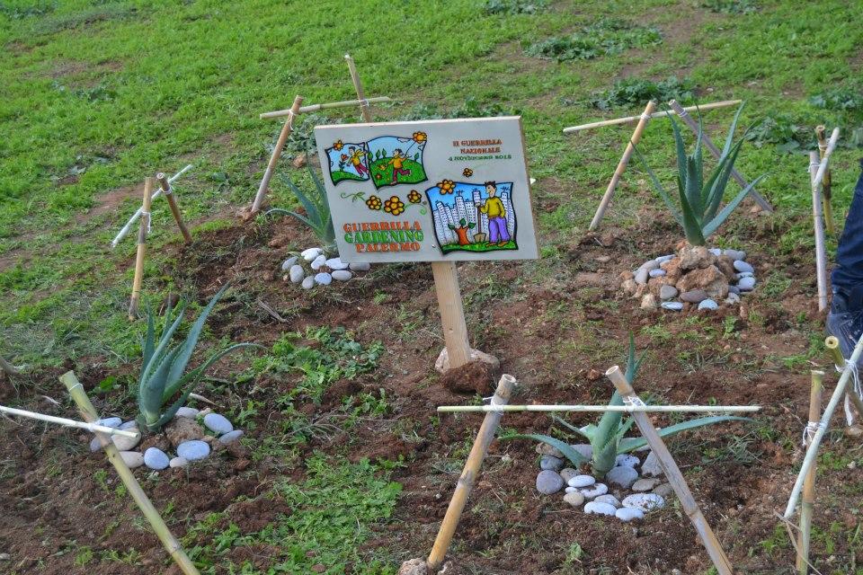 guerrilla gardening via Carducci