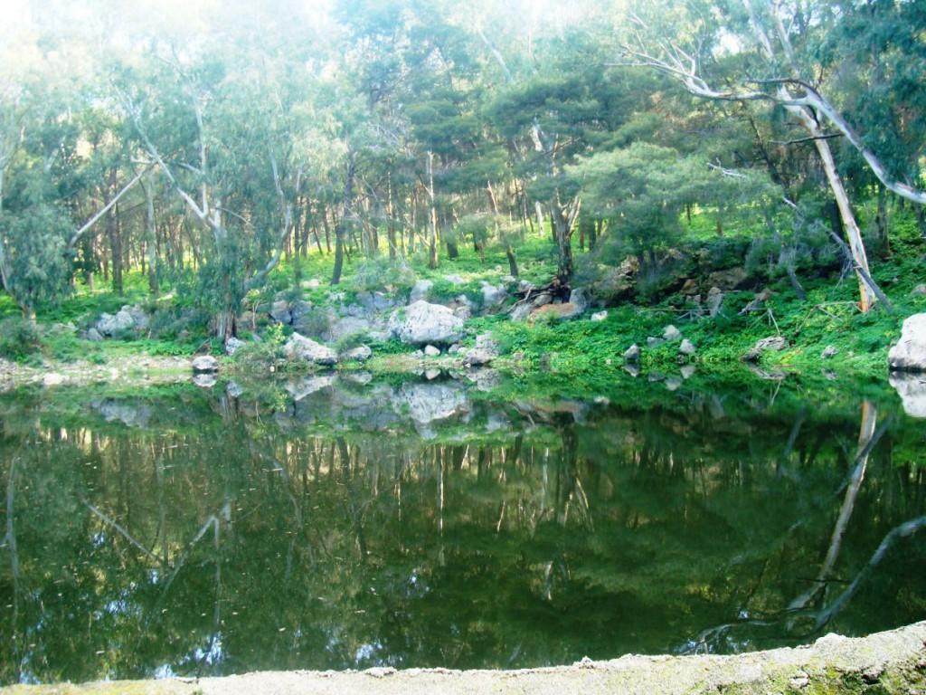 lago monte pellegrino